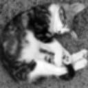 images/comete_blur.png